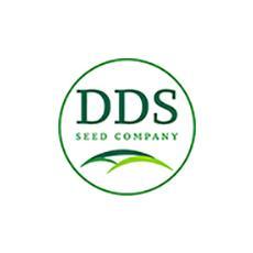 DDS Seed 125 web.jpg