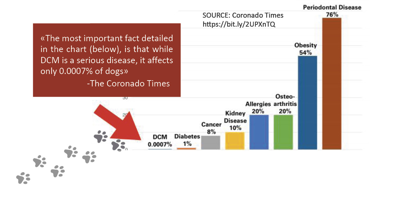Common Health Issues in Dogs