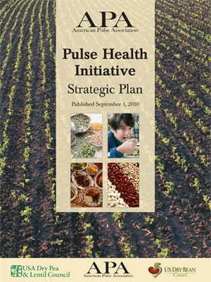 Pulse Health Initiative - Strategic Plan cover