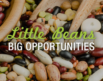 Little Beans, Big Opportunities