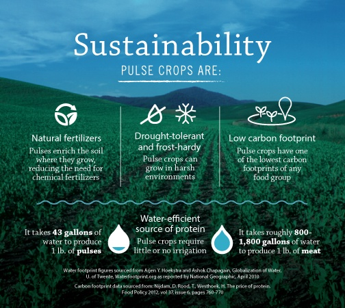 Pulse Crops are Sustainable