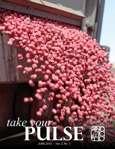 Take Your Pulse - Vol 2 No 1 - June 2012