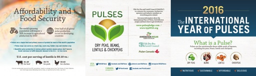 International Year of Pulses Infographic