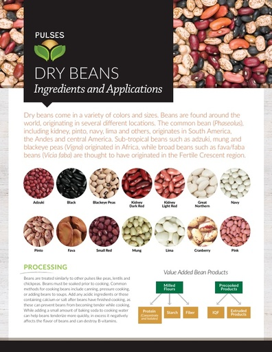 Pulses - Dry Beans