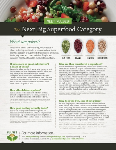 Meet Pulses: The Next Big Superfood Category - Infographic (English)