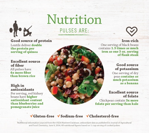 Pulses Are Nutrutious infographic