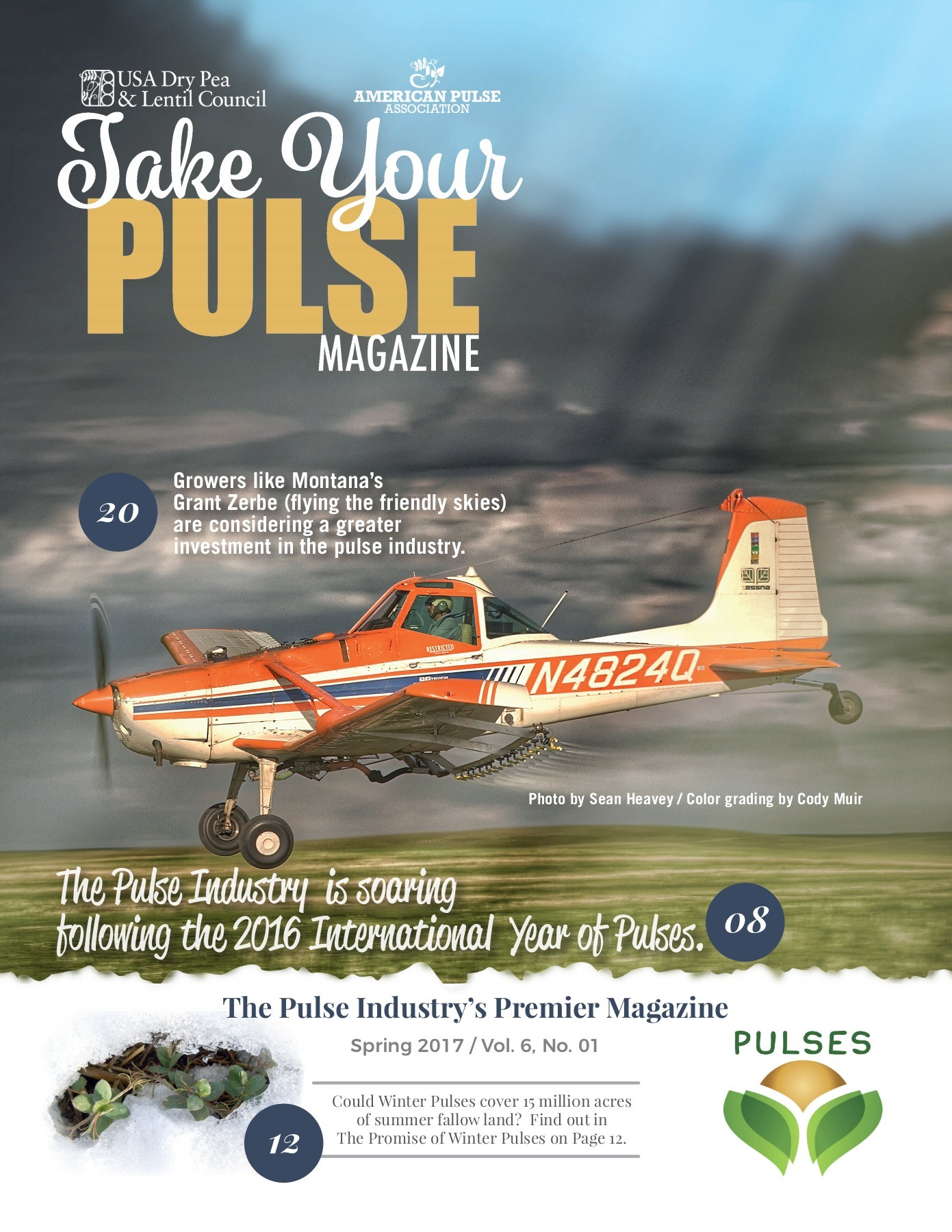 Take Your Pulse - Vol 6 No 1 - Spring 2017